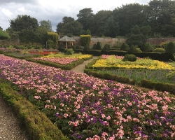 Sewerby-Gardens-near-Bridlington-attractions